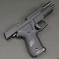 Моя мечта-SIG SAUER P226