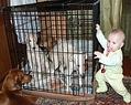 Самые любимые дети- это внуки!