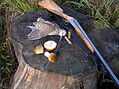 Вальдшнеп с грибами