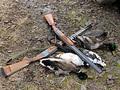 Открытие весенней охоты по перу