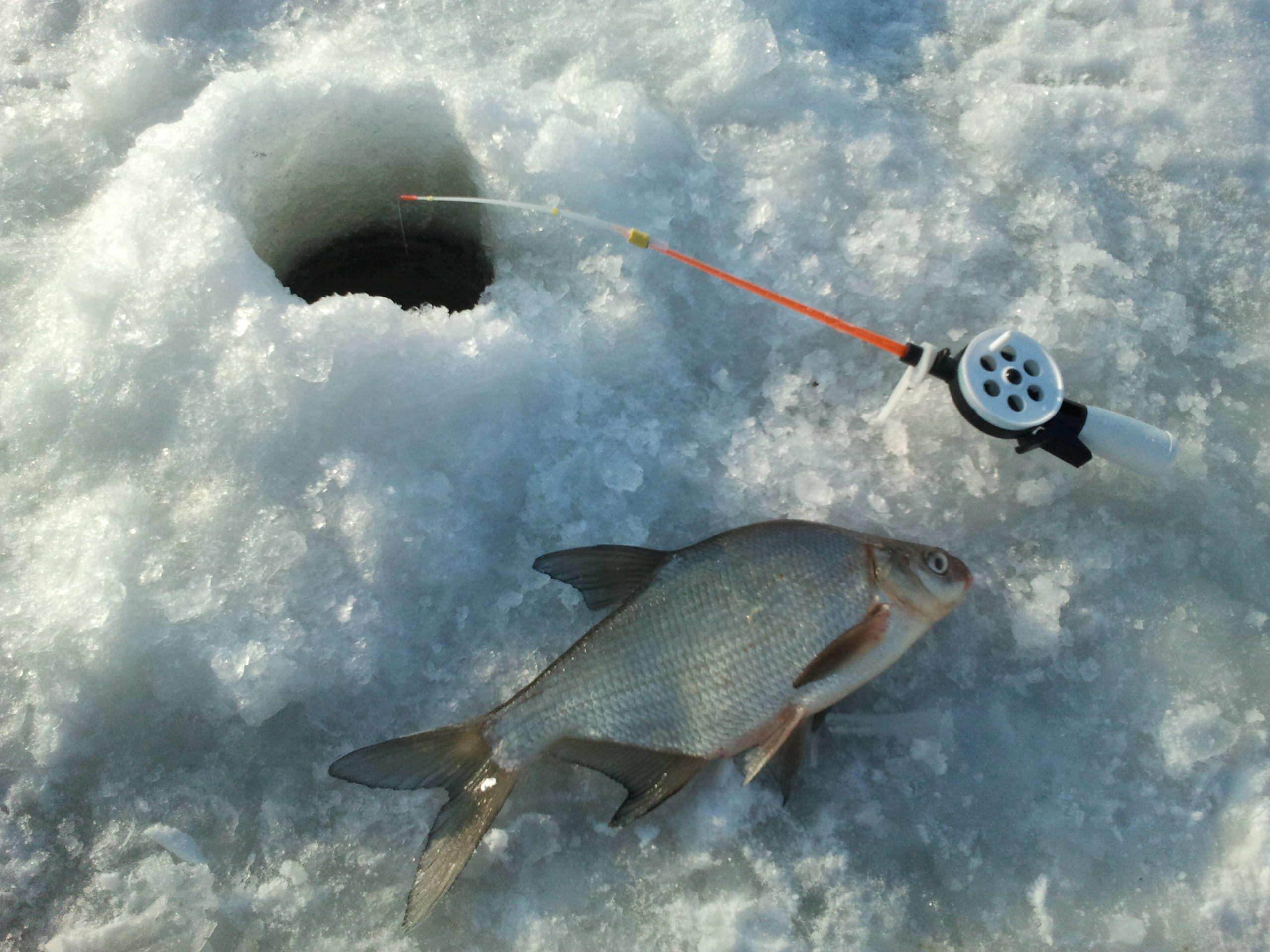 Картинки с рыбалкой зимней, летием