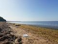 Лето 2019. Финский залив.